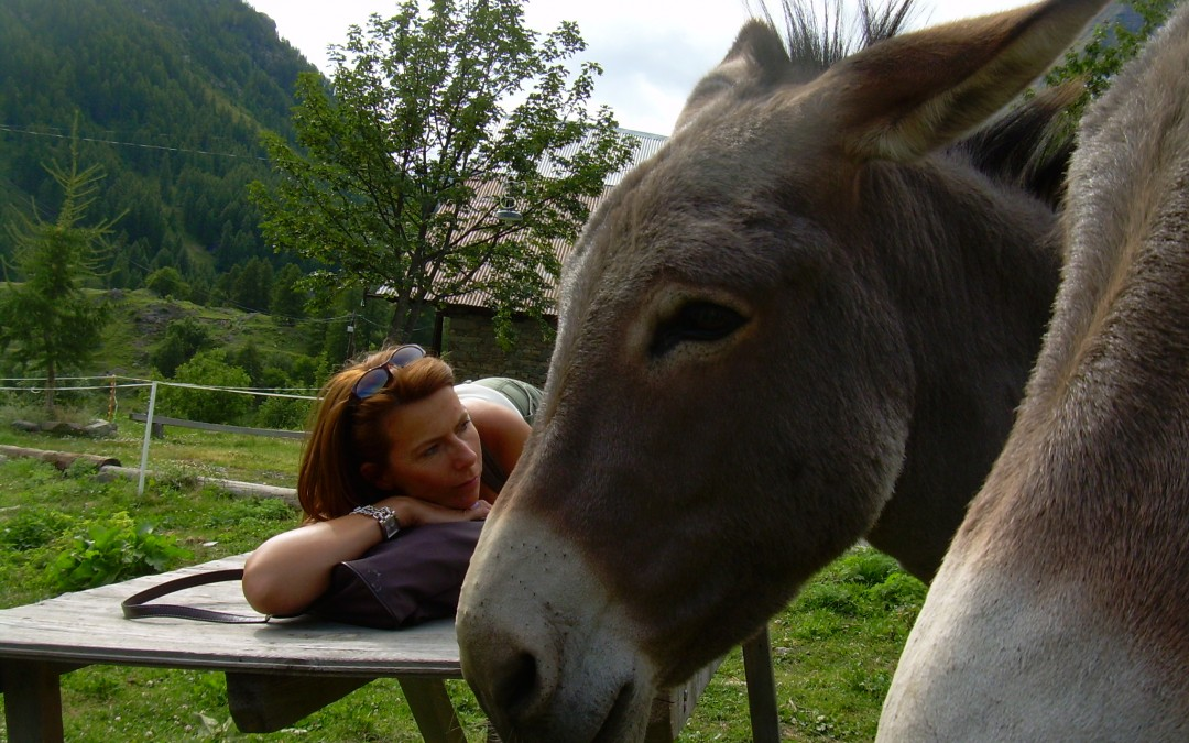 Amour et respect pour le monde animal