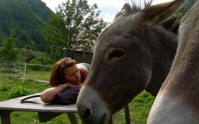 Compassion et Amour pour le monde animal