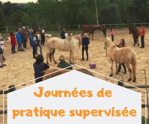 JOURNÉES DE SUPERVISIONS prochaines dates