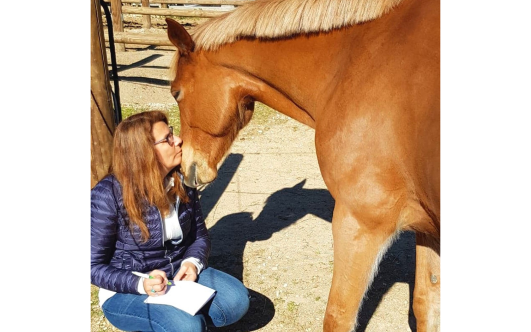 Être professionnel en communication animale