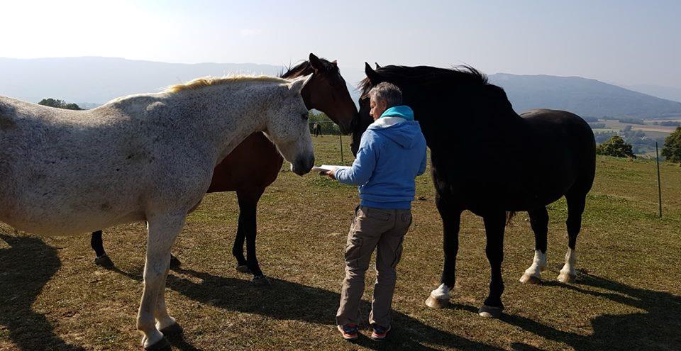 Communiquer par télapathie avec les animaux - présentation