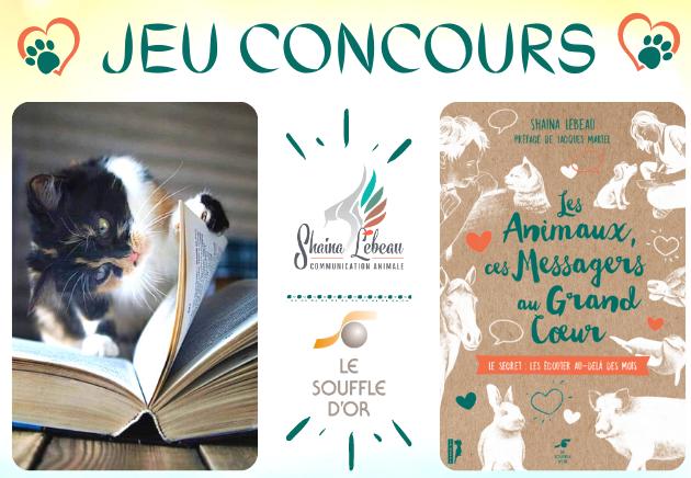 concours livre Shaina Lebeau