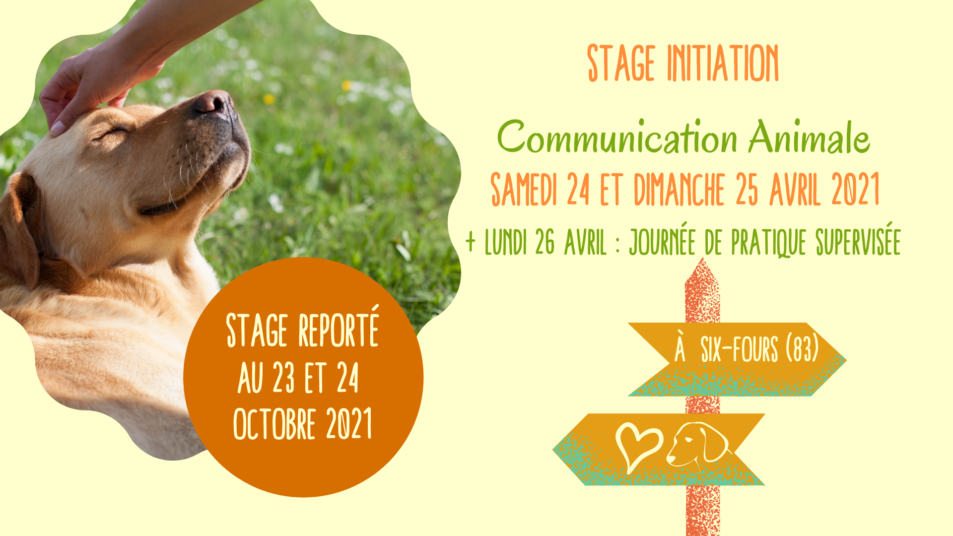 stage initiation communication animale