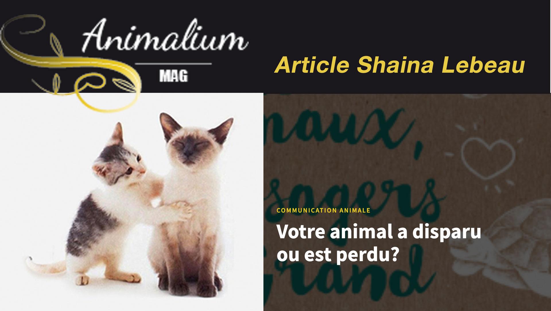 article Animalium Mag